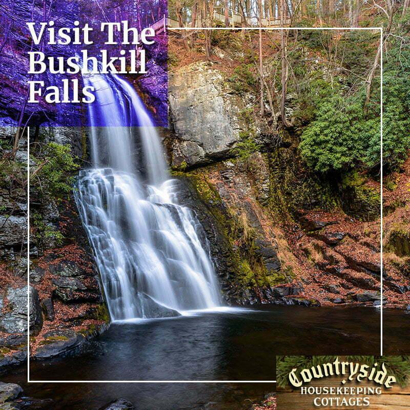 visit bushkill falls