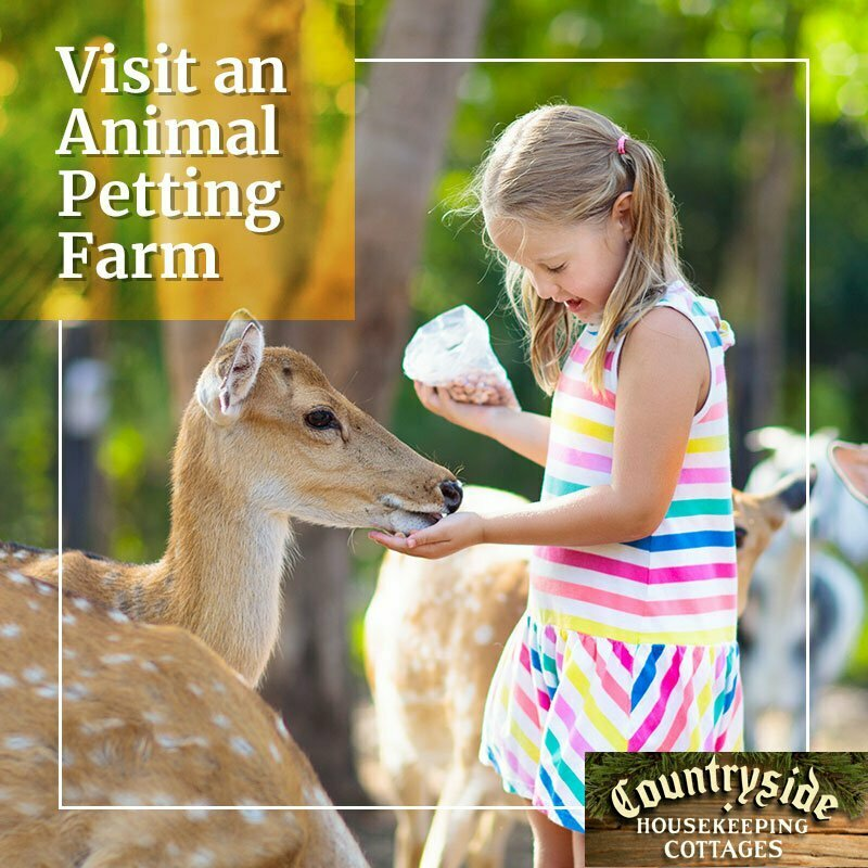 poconos petting farms